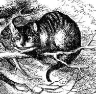 Katten i underlandet